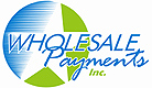 Wholesale Payments Inc Home
